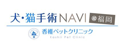 犬・猫手術NAVI@福岡 香椎ペットクリニック