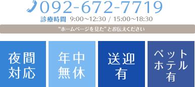 電話番号092-672-7719 診療時間9:00~12:30 15:00~18:30 夜間対応 年中無休 送迎有り ペットホテル有り